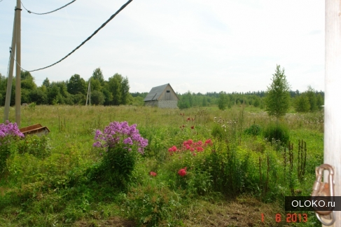 Продам участок 2000 соток, сельхозназначения (СНТ, ДНП).