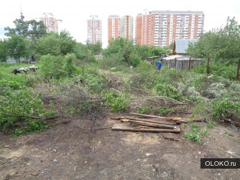Производим вырубку деревьев и кустарников.