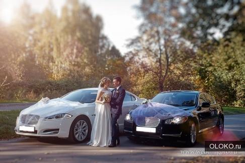 Авто Ягуар XF на свадьбу, бизнес.