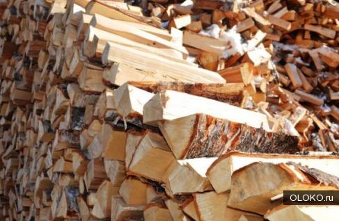 Куплю дрова березовые в любом виде.