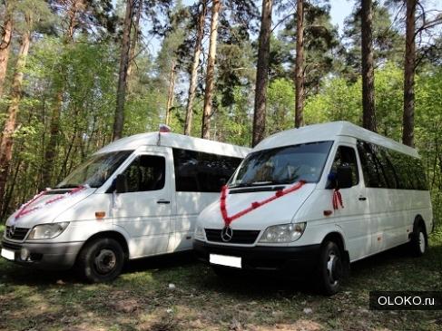 Пассажирские перевозки микроавтобусами Мерседес.