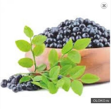 Aronia berry extract профилактика купероза, 10 мл.